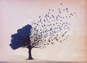 tree-birds-drawing-corvax-Favim.com-474177